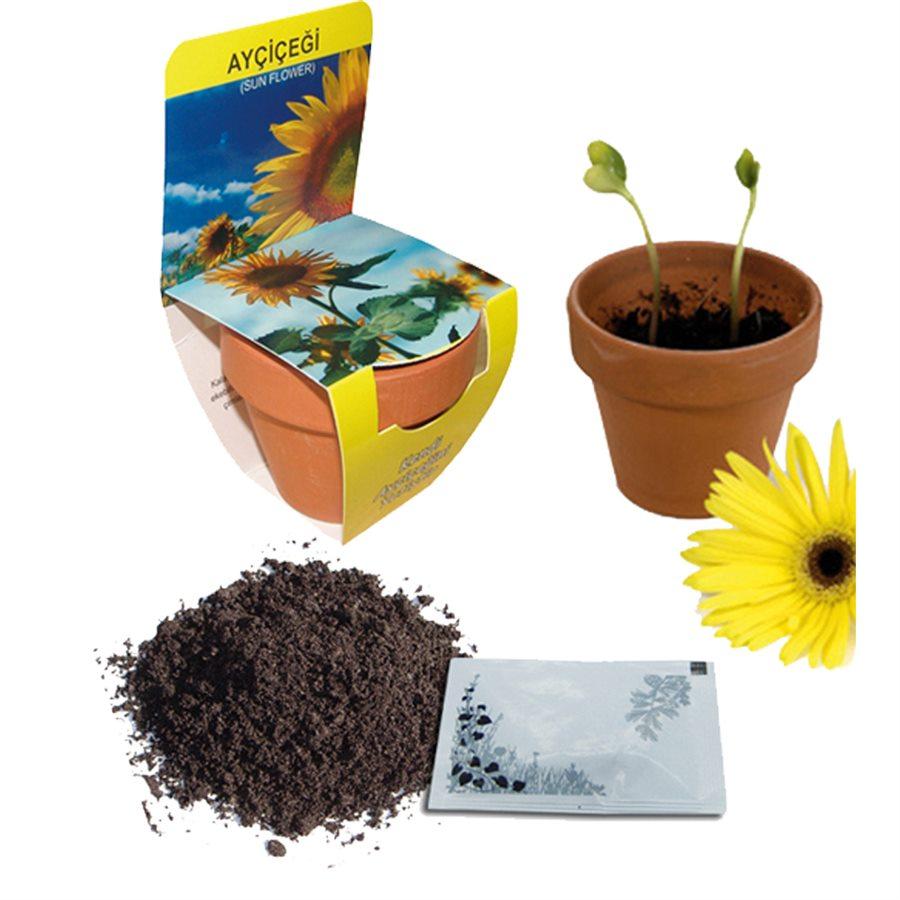 Toprak Saksılı Yetiştirme Kiti