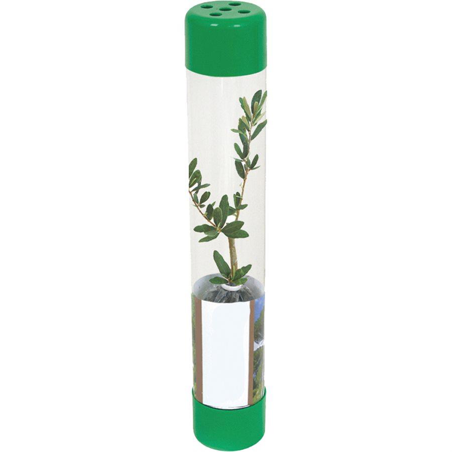 Plastik Şeffaf Ambalaj - Canlı Ağaç Fidanı